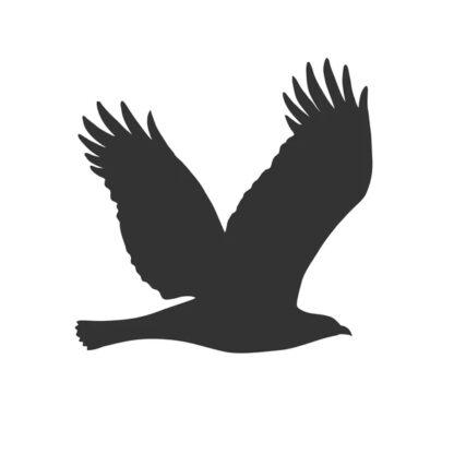 Vogelschutz Aufkleber bird
