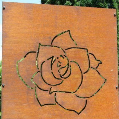 Sichtschutz mit Rosenblüte